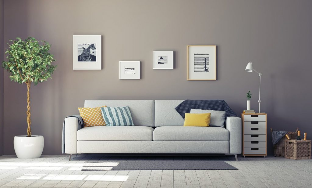 An organised living room with a stylish couch
